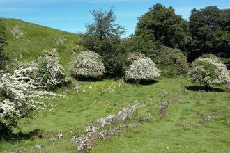 Iban Regnier - tourisme Euskadi Pays Basque - balade montagne 10