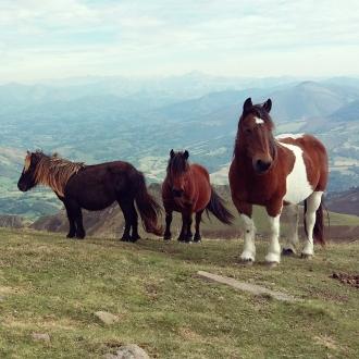 Iban Regnier - tourisme Euskadi Pays Basque - balade montagne 20