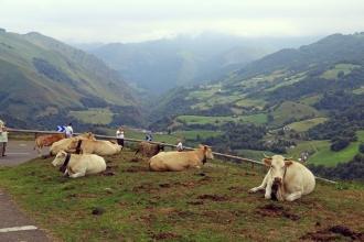 Iban Regnier - tourisme Euskadi Pays Basque - balade montagne 42